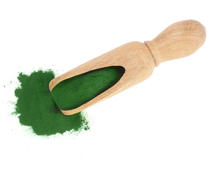 Powder Spirulina
