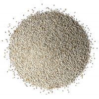 organic white chia seeds