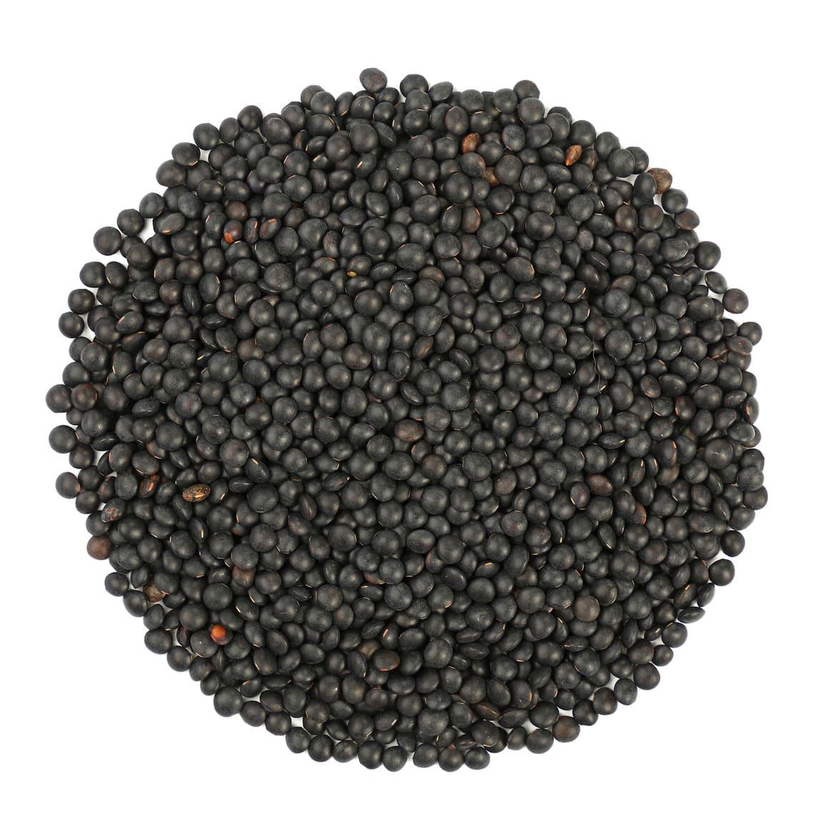 Organic Black Beluga Lentils Buy in